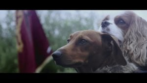 ame of Puppies DDB Sydney – Less intense, intense scenes